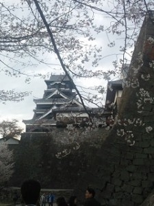 H28.3.26熊本城